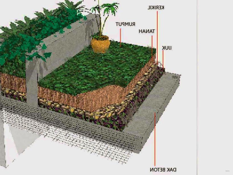 cara membuat taman diatas rumah