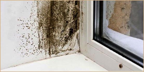 Tips Supaya Dinding Rumah Tak Lembab